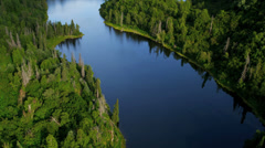 Stock Video Footage of Aerial view of remote spruce forest wilderness, USA