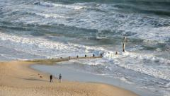Dog Walkers on the Beach Stock Footage