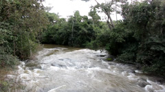 River in the jungle Stock Footage