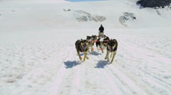 Dogsledding team in motion high mountain pass, Alaska Stock Footage