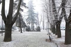 City park under rime frost. alba, northern italy. Stock Photos