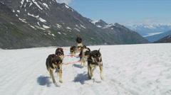 View of dogsledding Chugach Mountains, Alaska, Stock Footage