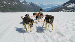 View of dogsledding Chugach Mountains, Alaska, Stock Footage