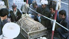 Men Sell Birds AFGHANISTAN Kabul 1980s Vintage Film Home Movie 7201 Stock Footage