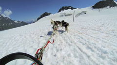 POV Alaskan Husky dogsledding, Alaska Stock Footage