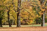 Stock Photo of autumn lanscape