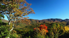 Autumn appalachian mountains blue ridge pkwy Stock Footage