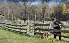 man mending fence - stock photo