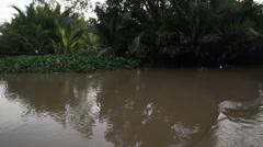 Jungle Delta Stock Footage