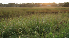 Cape Cod Marsh Late Afternoon - stock footage