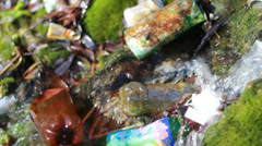 Conceptual unhygienic polluted river Stock Footage