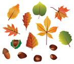 Stock Illustration of Autumn