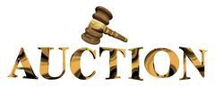 Auction Stock Illustration