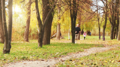 Male runner jogging in park in autumn park forest in fall colors Stock Footage