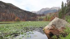 Wildfire-Cub Lake-Estes Park, Colorado Stock Footage