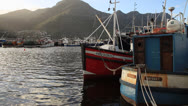 Stock Video Footage of Fishing boats at dawn in Hout Bay Harbour, Cape Town, South Africa.