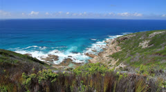 Scenic shot of the Indian Ocean and Fynbos Stock Footage