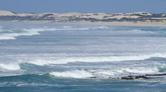 Wide shot of waves rolling into shore past coastal scrub and dunes Stock Footage