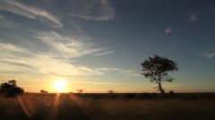 Driving in Africa at Sunset - Kruger National Park Stock Footage