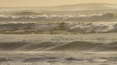Western Cape Kelp Ocean SLOMO 02 Stock Footage
