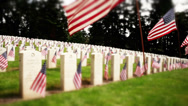 Stock Video Footage of Tracking military cemetery, flowers and flags on tombstones