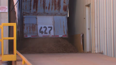 Peanuts dumped from truck Stock Footage