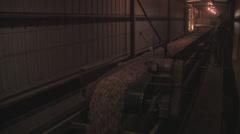 Peanuts into vast wearhouse Stock Footage