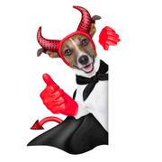 Devil dog Stock Illustration