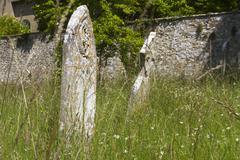 Overgrown Graveyard, Summer Stock Photos