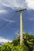 Old telegraph pole Stock Photos