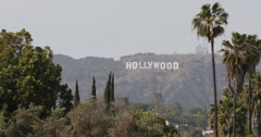 Ultra HD 4K Hollywood Sign Los Angeles Hills Valley Palm Trees Vacation Holidays Stock Footage