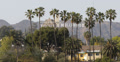 Ultra HD 4K UHD Hollywood Sign and Tower Los Angeles Hills Valley Palm Trees Footage
