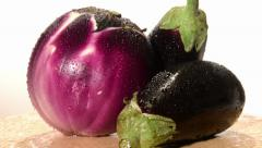 Eggplants Stock Footage