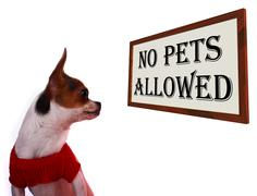 No pets allowed sign showing unauthorized forbidden zone Stock Photos