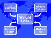 Stock Illustration of weight loss diagram showing fiber exercise fat and calories