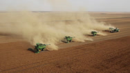 Stock Video Footage of Four Combines Harvest Lentil Field