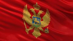 Flag of Montenegro Stock Illustration