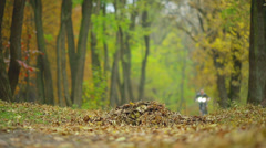 The bike rider in the picturesque autumn varicolored forest Stock Footage