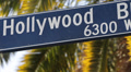 Traffic Hollywood Street Sign Pedestrians Crosswalk Palm Trees Vacation Close Up Footage