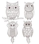 Set of cute owls. Stock Illustration