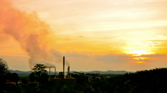 Palm oil factory sunset Stock Footage