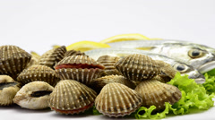 Raw clams open the shell Stock Footage