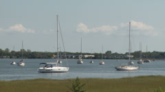 Sailboats at rest in water  Stock Footage