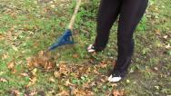 Stock Video Footage of Woman raking leaves 4
