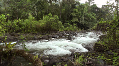 Rio Mindo running through montane rainforest in western Ecuador Stock Footage