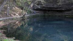 Beautiful Missouri Fresh Water Spring Pan Stock Footage