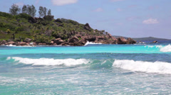 died tree on sandy beach at Seychelles - stock footage