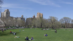 NYC Skyline, Central Park Early Spring Family Picnic People Relaxing Walking Sit Stock Footage