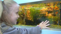 Child, Little Girl Watching, Looking Fishes in an Aquarium at Pet Shop in Mall Stock Footage