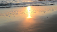 Stock Video Footage of peaceful and quiet sunset over the atlantic ocean coastline